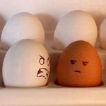 Como reagir quando alguém fala sobre racismo