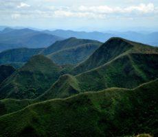 Plante uma Árvore – Campanha trabalha para preservar a Serra do Gandarela em MG