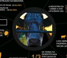 Cowspiracy – O Segredo da Sustentabilidade [INFOGRÁFICO]