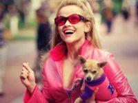 3 Filmes Despretensiosos que Desafiam Estereótipos Femininos em Hollywood