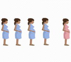 Precisamos Falar Sobre Aborto – Um Infográfico